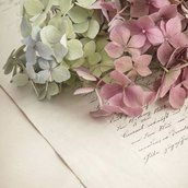 letter and flowers Wallpaper